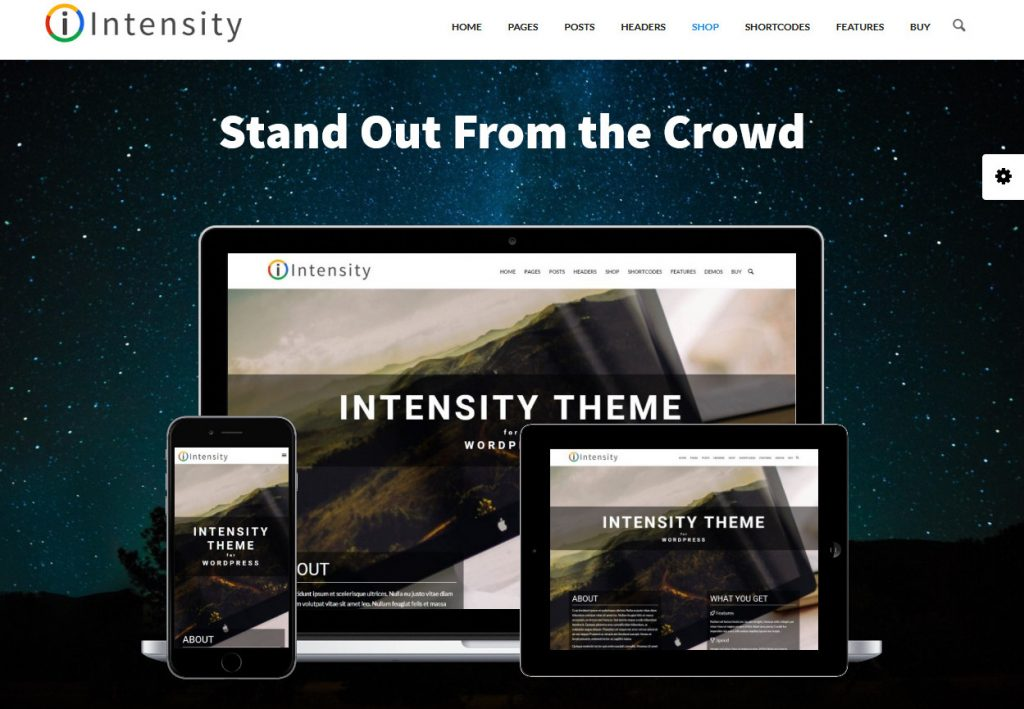 Intensity Single Page WordPress Theme