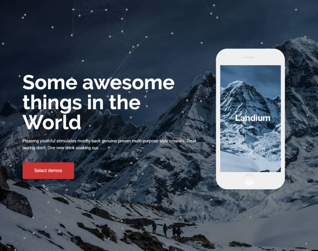 Landium, One Page Squeeze Page Theme