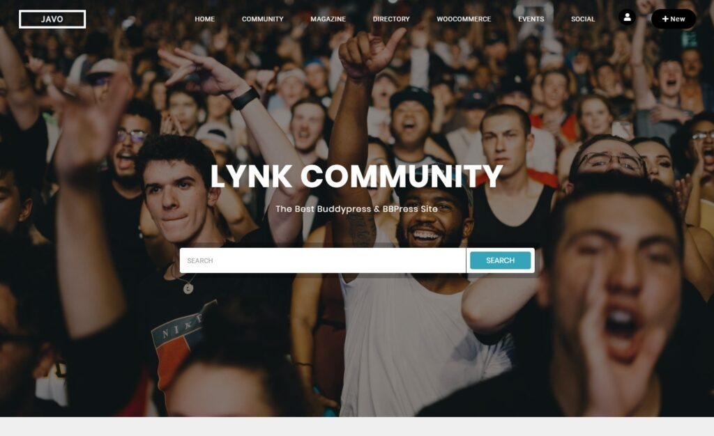 Lynk WordPress Directory Community and Dating Theme