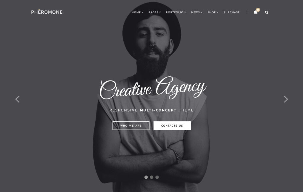 Pheromone Creative Multi Concept WordPress Theme