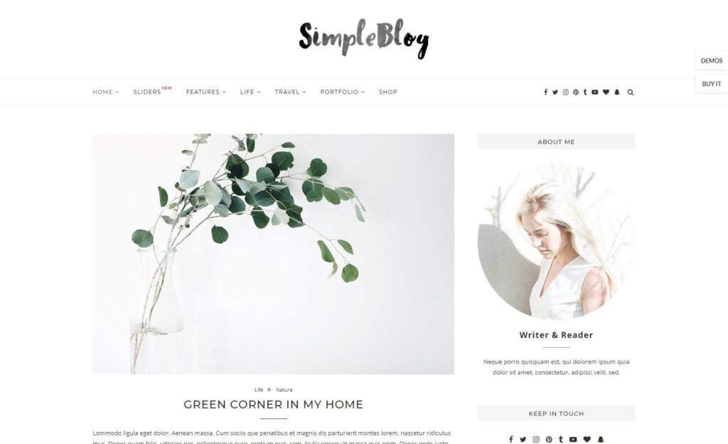 Soledad Simple Elementor WordPress Personal Blogging Theme