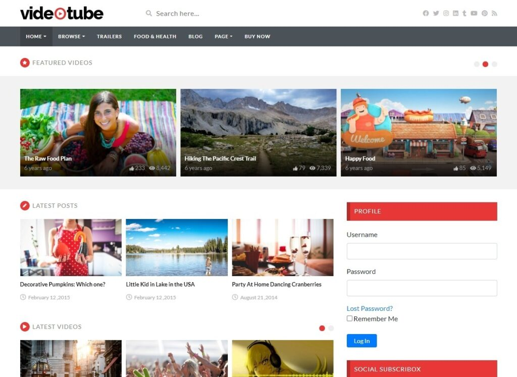 VideoTube WordPress Theme for Video Magazines