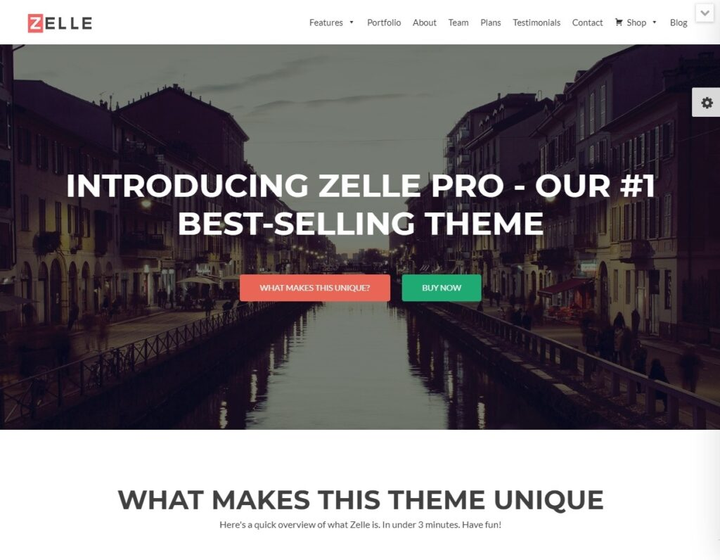 Zelle Pro, WordPress Theme for Landing Pages