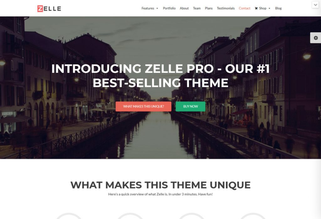 Zelle Pro Creative WP eBooks Theme