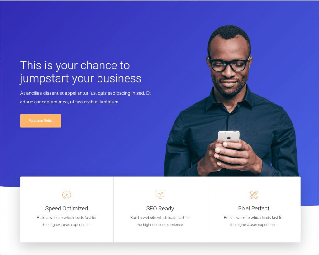 Fildisi, Clean, Professional One Page Theme