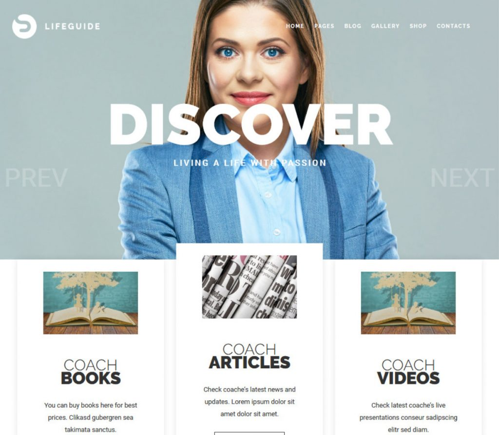 LifeGuide Public and Motivational Speaking WordPress Theme