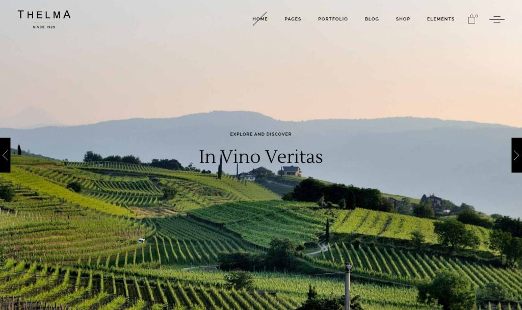 Thelma Classy WordPress Theme for Wineries