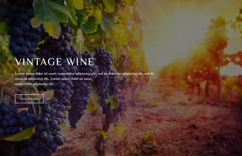 Wine Maker Parallax Scrolling Winery WordPress Theme